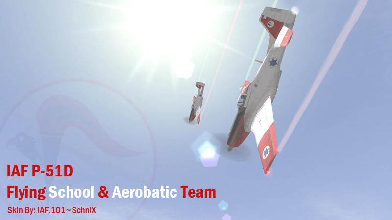מוסטנג D בית ספר לטיסה